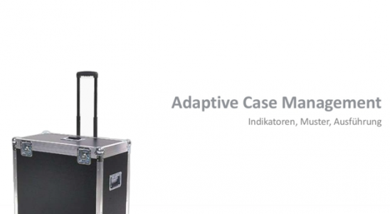 Adaptive Case Management